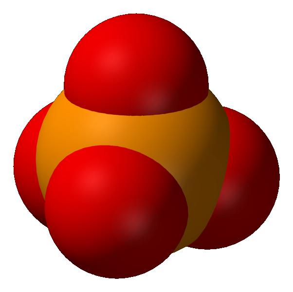 Le cycle aquatique du phosphore